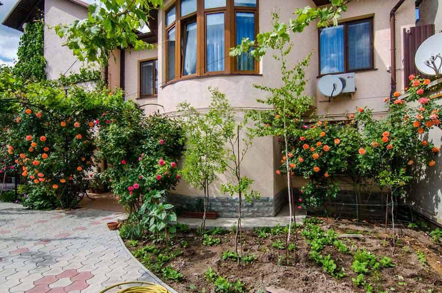 Розы во дворе отеля
