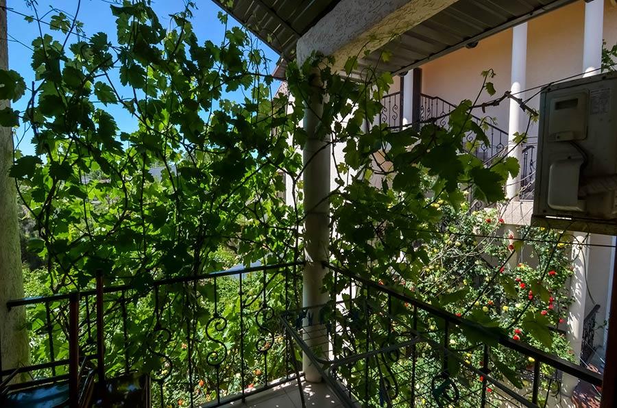 Вид с балкона номера Люкс - студия 4 мест 2 эт.