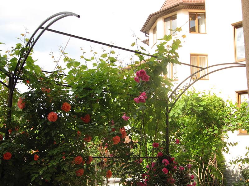 Цветы украсят ваш отдых